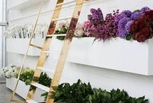 flower truck, flower shop