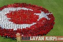 Havlayan Kirpi / http://www.havlayankirpi.com