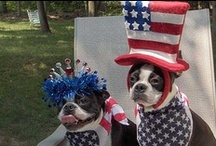 Memorial Day Weekend / Ideas to make you Memorial Day Weekend that much better!