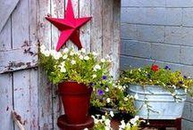 Gardening: Container Ideas / Inspiring container gardening ideas.