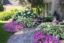 Outdoor Living: Landscaping Ideas / Frugal DIY landscaping and curb appeal inspiration.