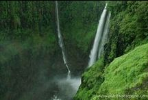 Waterfalls near Pune / Waterfalls to visit during the monsoon season near Pune