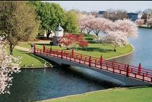 Huntsville, AL Activities / Activities to plan with your Mom and Dad in Huntsville, AL.