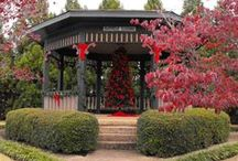 Hartselle, AL Activities / Activities you can plan with your Mom and Dad in Hartselle, AL.