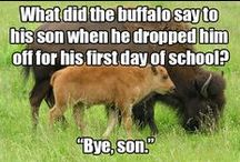 Friday Funnies / Let's laugh! Clean and funny jokes and humor.