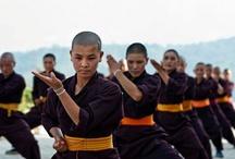 Kung Fu I Love to watch / by S Yao