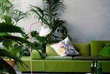 in green indoor