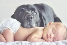 Adorable Babies / A collection of the cutest babies.