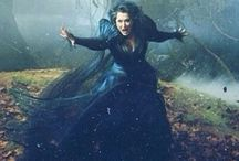 Into The Woods / Into the woods without delay, be careful not to lose the way