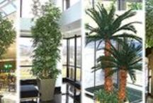 ARTIFICIAL PLANTS and TURF / DIRECT LINKS to company websites - Artificial Plants - Preserved Plants - Silks and Silk Plants