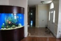 AQUARIUMS / DIRECT to COMPANY LINKS - see all their products - Aquariums - Fish Tanks - Pumps - Supplies