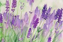 art and watercolor / by Lorie Sicosana