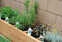 Housekeeping and Gardening