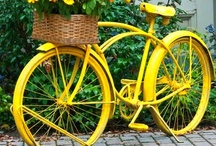 Yellow / by Cathy Thompson Sauer