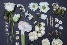 | Garden Weddings | / Inspiration for your Garden Wedding:  garden wedding decor, dress & ceremony, botanical details, and garden wedding locations