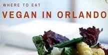 Vegan Restaurants In Florida / Plant-based Orlando restaurants that will rock your socks off.