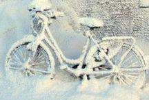 Winter Time / Beautiful white winter...