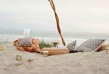 ▲ picnic ▲