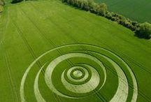 24. Landscape. / Ландшафтный дизайн и,элементы и идеи связанные с ним.