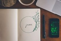 ~ journals , letters , books ~ / writing