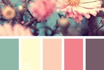 Color Pallets / For any color needs