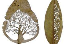 Art  -  Natural Materials / Arte usando materiales de la Naturaleza  / by Marila Rademacher
