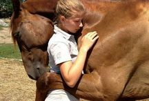 A  -  Horse Friendship and Love / by T - 1  Marila Rademacher