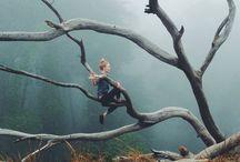 ~ wonderland ~ / Everything that is wonderful in nature