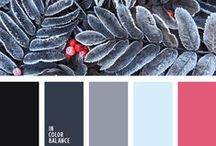 Winter colors / Color combo that was inspired by winter and nature. Color combination, color pallets, color palettes, color scheme, color inspiration. Color of winter. Winters color.