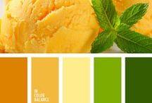 Ice cream / Ice cream colors