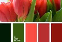 Red and green / #romanuke #incolorbalance #color #colorcombination #red #green #inspiration #colorinspiration