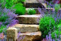 Puutarha / Ideoita puutarhaa varten
