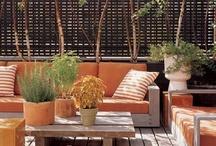 roof & garden