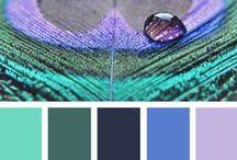 Colour / Colour palettes | colour inspirations |