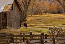 ~ Country Life ~ / by Cindy Payne