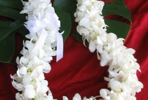 Hawaiian Flower Leis / Fresh flower leis from the Big Island of Hawaii.  Leis for your party, luau, graduation, wedding or other special event.