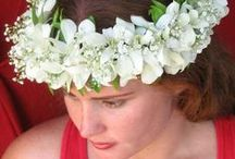 Hawaiian Head, Wrist and Ankle Leis / Haku Leis - Hand made with Hawaiian orchids, fern and baby's breath all woven into an elegant piece for head, wrist or ankle.