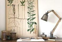 Botanical boards