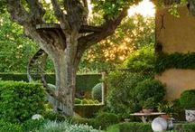 Great Gardens / Great gardens and outdoor design