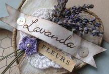 λεβαντα...levanda / Flower
