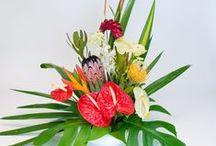 Hawaiian Flower Assortments / Tropical flowers arrangements made from our fresh Hawaiian flowers.