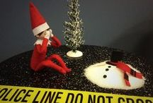 Bobby - VPD's Elf on the Shelf / Bobby is visiting the VPD for the month of December 2014. Word has it that he is prone to acts of mischief.