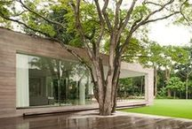 Terrasse en bois & jardin / Terrasse en bois / Wooden terrace / Protection Bois