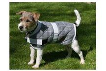Akcesoria dla Psów / Nasze psy zasługują na odrobinę luksusu. Zafunduj im prawdziwy raj z naszymi akcesoriami.