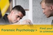 Forensic Psychology / Enhance your career potential by enrolling in the Master of Arts (MA) in Forensic Psychology degree program at Argosy University! Coursework for application to law enforcement, legal & organizational consultation, program analysis. Epidemiology of mental/behavioral disorders, risk factors for violence & criminality, profiling & patterning, psychological testing, prediction & intervention measurement, forensic assessment, criminal & civil law, secure environments, intervention skills.