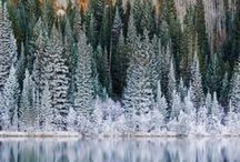 Vinter / Winter inspo, moodboard