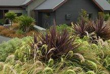 Gardens & Landscape Design in  New Zealand / NZ