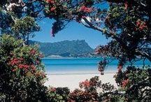 Whangarei Northland New Zealand / NZ Attractions