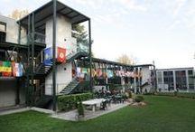 Webster Geneva / by Webster University Office of Study Abroad
