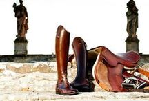 Horse Tack / by Jeanne Hechmer